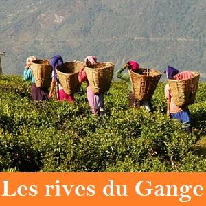 Les rives du Gange
