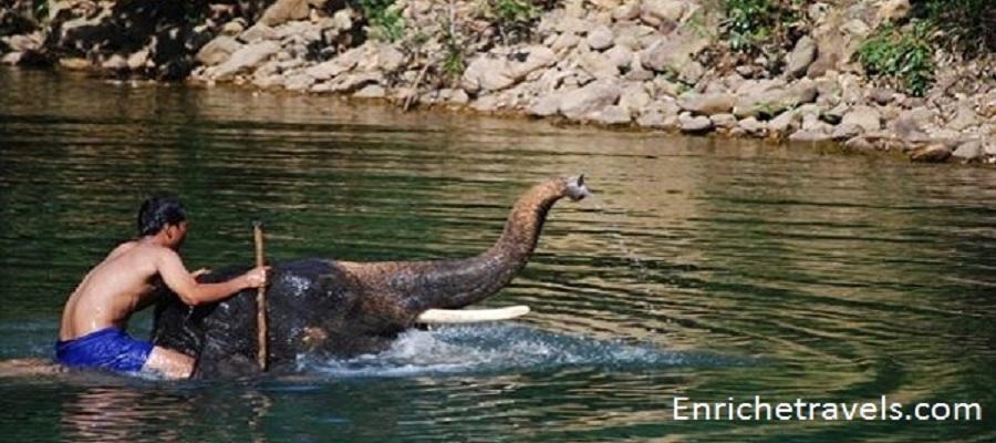 india-wildlife-tour2