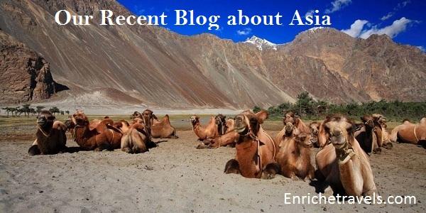 Ladakh-8
